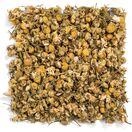 Egyptian Chamomile