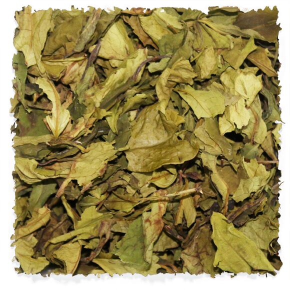 Hong Yu White Tea